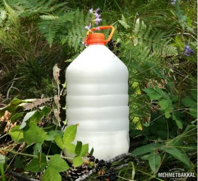 Günlük Çiğ İnek Sütü - 5LT